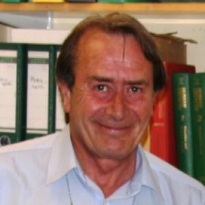 Prof D Dunger - Innodia